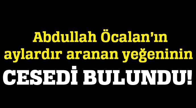 Abdullah Öcalan'ın yeğeni Viyana'da intihar etti!