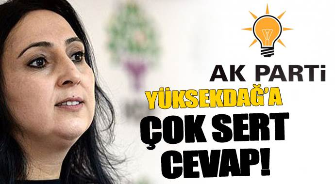 Elvan'dan Yüksekdağ'a anlamlı cevap!