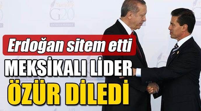 Erdoğan Meksikalı lidere sitem etti