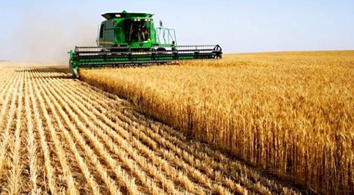 Tarım ÜFE arttı