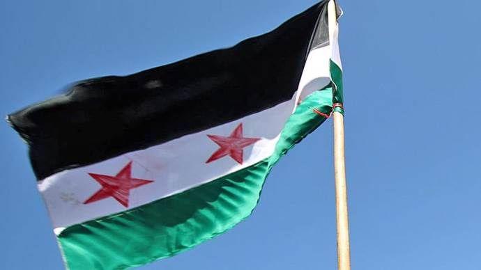 Suriye muhalefeti Türkiye'deki seçim sonucundan memnun