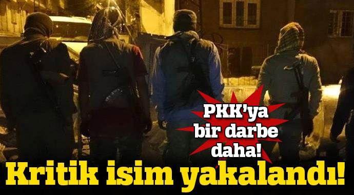 PKK'nın kritik ismi yakalandı