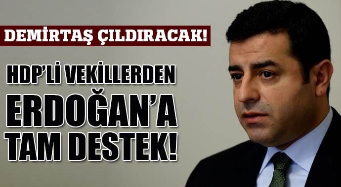 HDP'li iki isimden Erdoğan'a destek