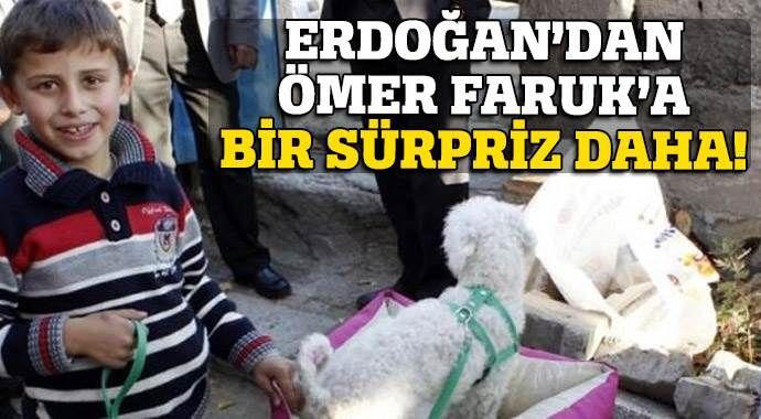 Erdoğan'dan Ömer Faruk'a bir sürpriz daha