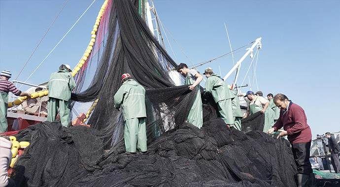 Balıkçılar istavrite hasret kaldı