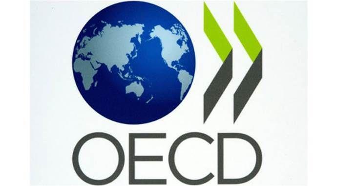 OECD Türkiye'nin büyüme tahminini düşürdü