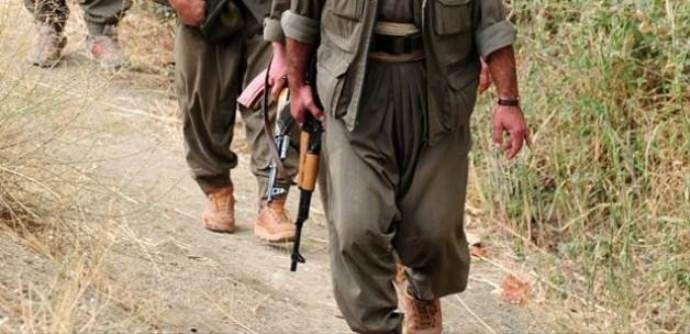Şırnak'ta son 2 yılda 1019 terörist teslim oldu