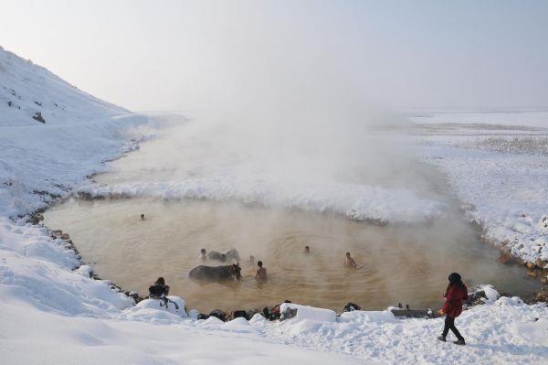 - 14 derece soğukta atlarıyla göle girdiler