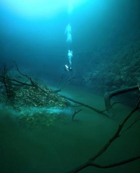 Okyanusun altındaki gizemli nehir