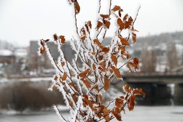 Kura Nehri buz tuttu