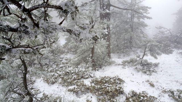 Manisa'da kar kalınlığı 10 cm'yi geçti