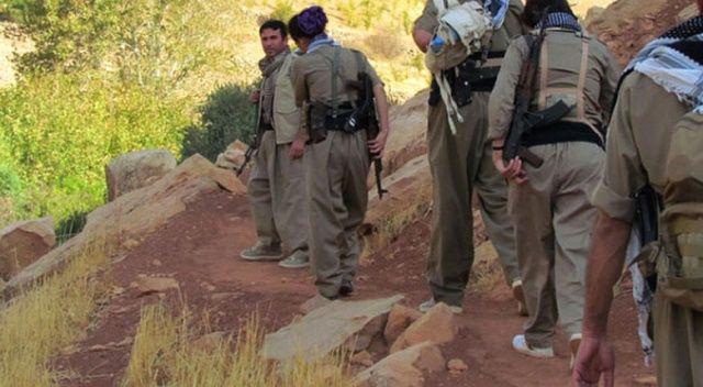Siirt'te 3 terörist öldürüldü