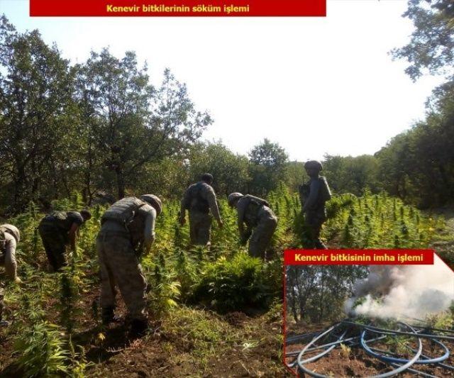 Diyarbakır'da PKK'nın finans kaynaklarına ağır darbe
