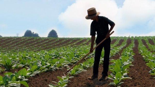 Onbinlerce çiftçiye müjdeli haber