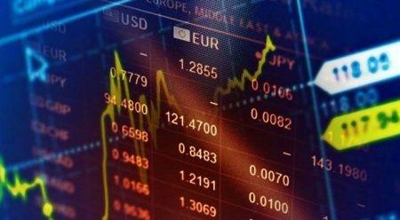 'Kripto paralar 10 yılda yüzde 38 bin 391 değer kazanacak'
