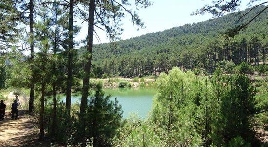 Çam ormanı içindeki 'saklı cennet', turist akınına uğruyor