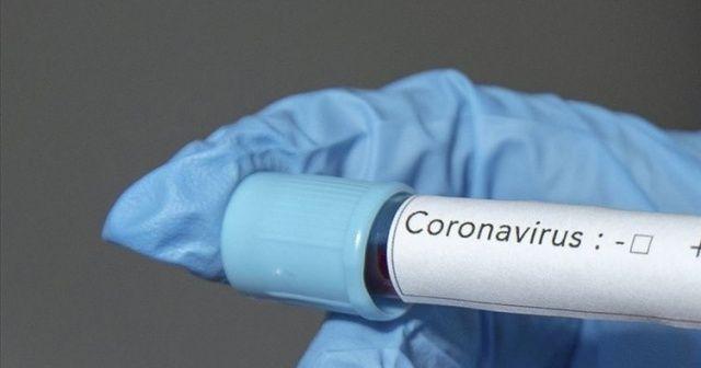 Bilim adamlarından umut veren açıklama: Koronavirüs aşısı uzun yıllar koruyabilir