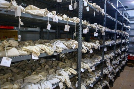 Tohum mirası salgın hastalıklara karşı böyle korunuyor