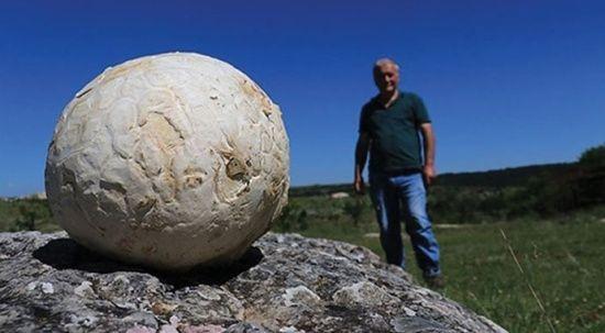 5 kilogram ağırlığında... Futbol topu sandı gerçek çok başka çıktı