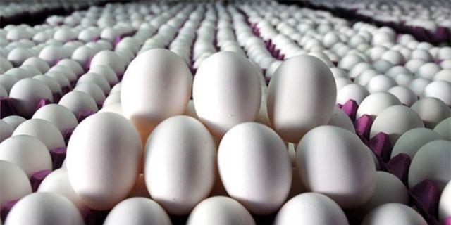 İnanılmaz! Yumurtayı bu şekilde saklarsanız 2 gün...