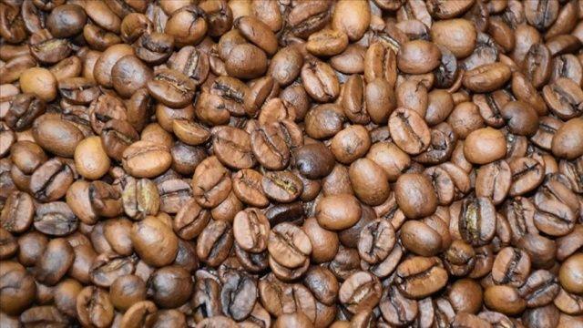 Bilim adamları uyarıyor: Küresel kahve krizi geliyor