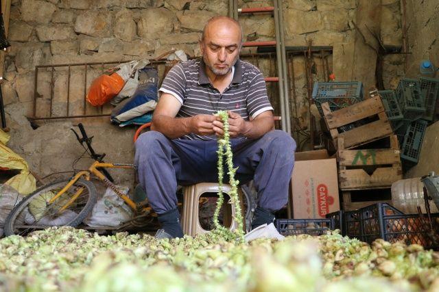 Amasya'nın tescilli 'gram altını': Çiçek bamyası