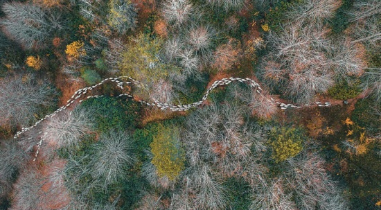 Kuş bakışı güzellikler, havadan çekilen en güzel fotoğraflar... Türk fotoğrafçı kazandı