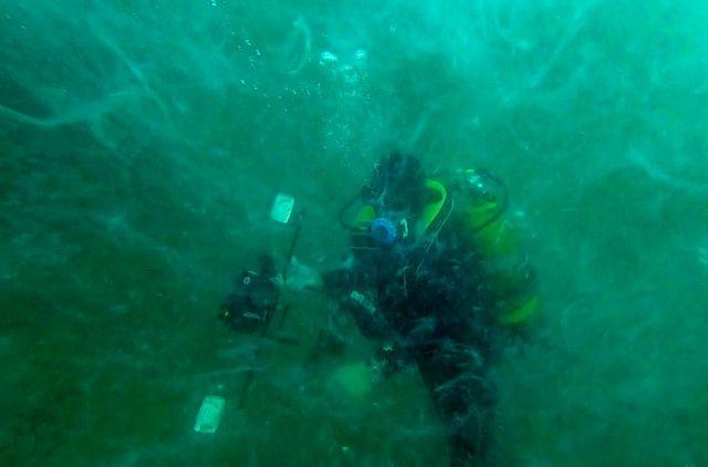 Deniz dibinde müsilajın yoğunluğu görüntülendi