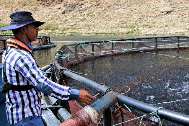 Elazığ'da üretiliyor, 25 ülkeye ihraç ediliyor