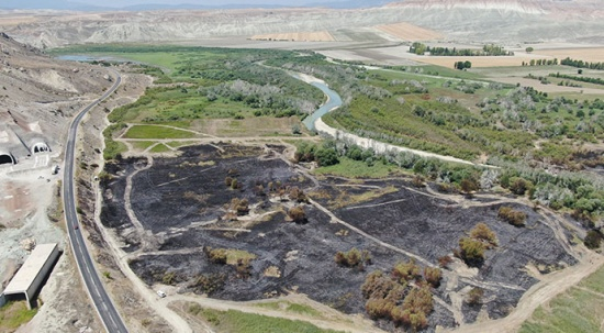 Nallıhan Kuş Cenneti'ndeki yangının nedeni belli oldu