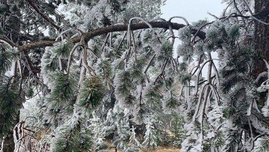 Sarıkamış'ta hava sıcaklığı -10 dereceye düştü