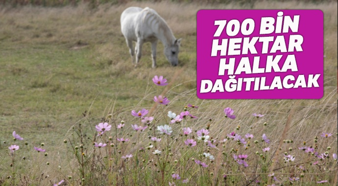 700 bin hektar halka dağıtılacak