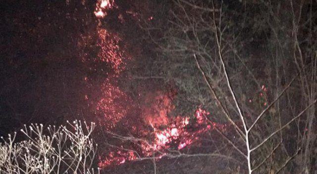 Zonguldak'ta orman yangını büyümeden söndürüldü