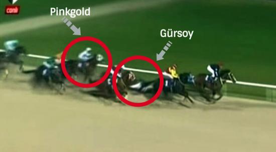 İzmir'deki at yarışlarında kaza! Sahada uyutuldu