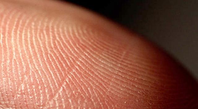 Biyoyazıcıyla deri çipi üretilecek