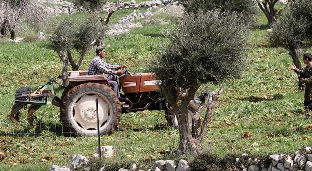 İsrail, Filistinlilere ait araziye el koydu