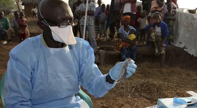 Batı Afrika ülkelerinde 'Lassa sıtması' alarmı