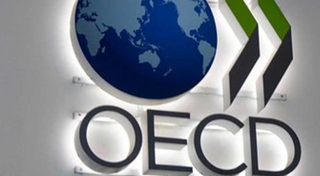 OECD yeniden 'pardon' dedi