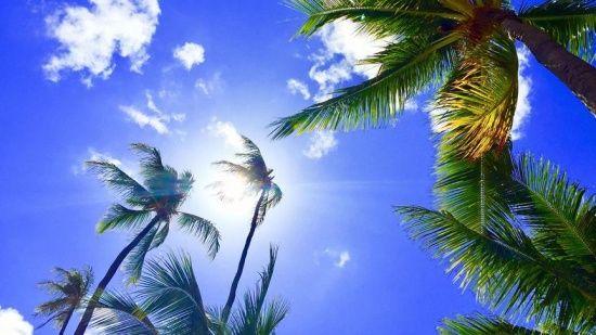 Hawaii 'güneş kremi' düzenlemesiyle ABD'de bir ilke imza attı