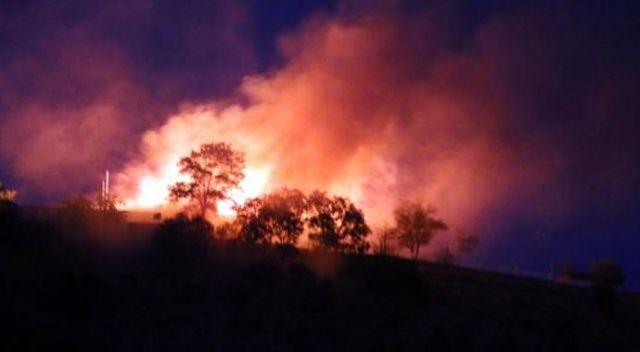 Son Dakika... Arkeolojik alanda orman yangını çıktı
