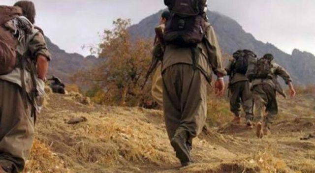 Van'da 1'i ölü, 2 PKK'lı terörist ele geçirildi
