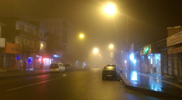 Ardahan ve Ağrı'da yoğun sis