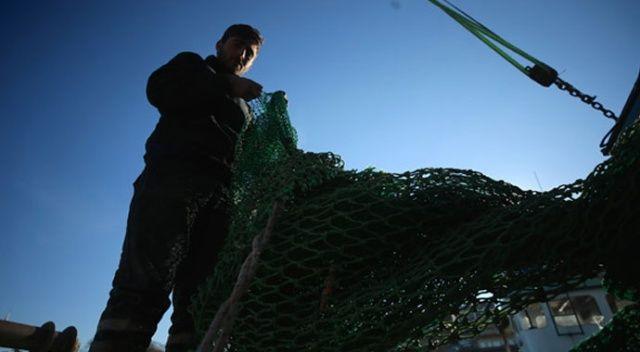 Balıkçılar uyardı: Hamsi fiyatı yükselişe geçebilir