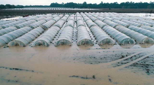 Mersin'de seralar sular altında kaldı! Çiftçiler yardım bekliyor