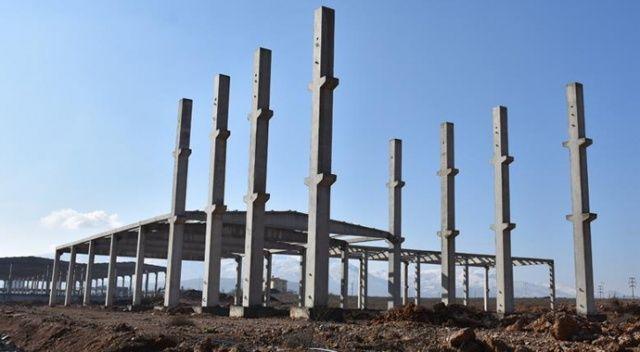 Kayısı çekirdeği kabuğundan üretilen aktif karbon için fabrika kuruluyor