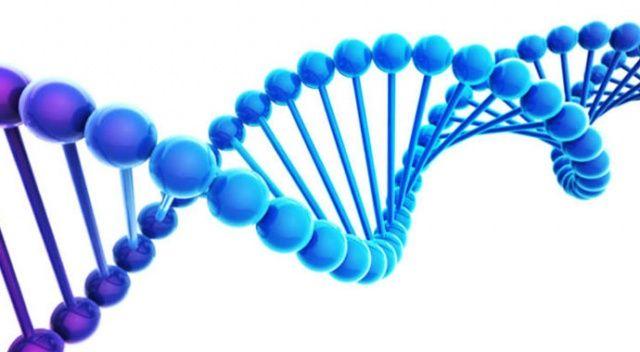 Kimliksiz cesetler için 'DNA veri tabanı' oluşturuluyor