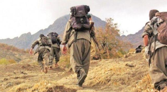 Terör örgütü PKK'nın çaresizliği gözler önüne serildi