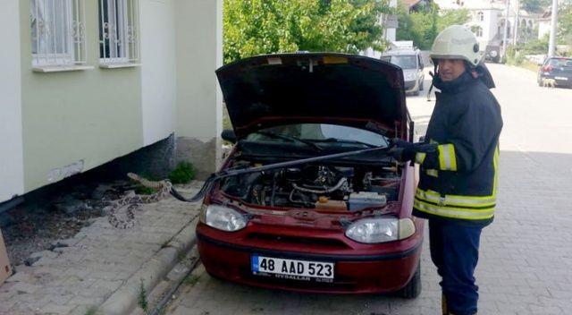 Aracın motoruna giren yılanı itfaiye çıkardı