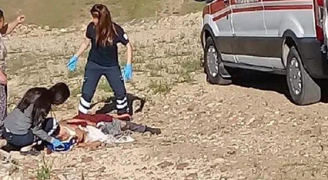 Köpeklerin saldırısına uğrayan 82 yaşındaki kadın öldü