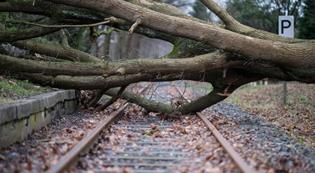 Almanya'da fırtına: 20 yaralı